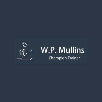 WP_Mullins-fencing
